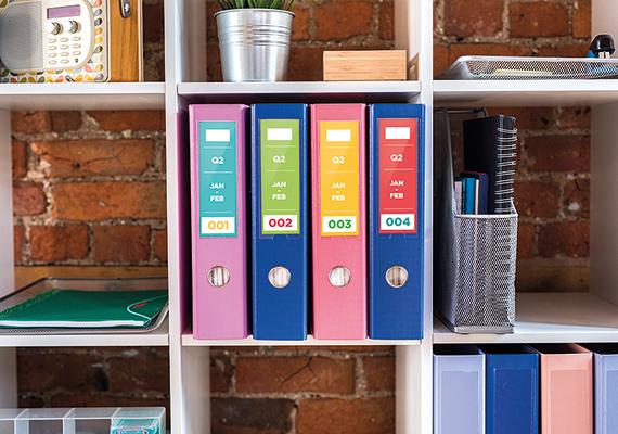 cztery segregatory z dokumentami ustawione na półce