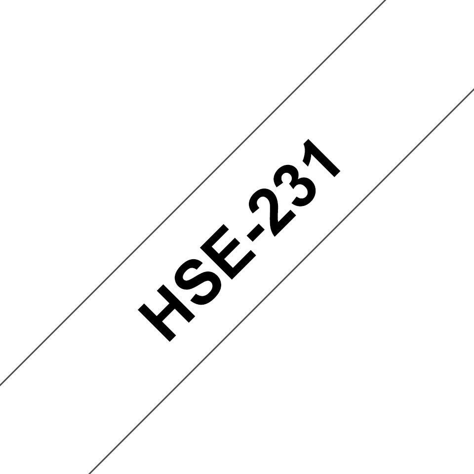 HSE231_main