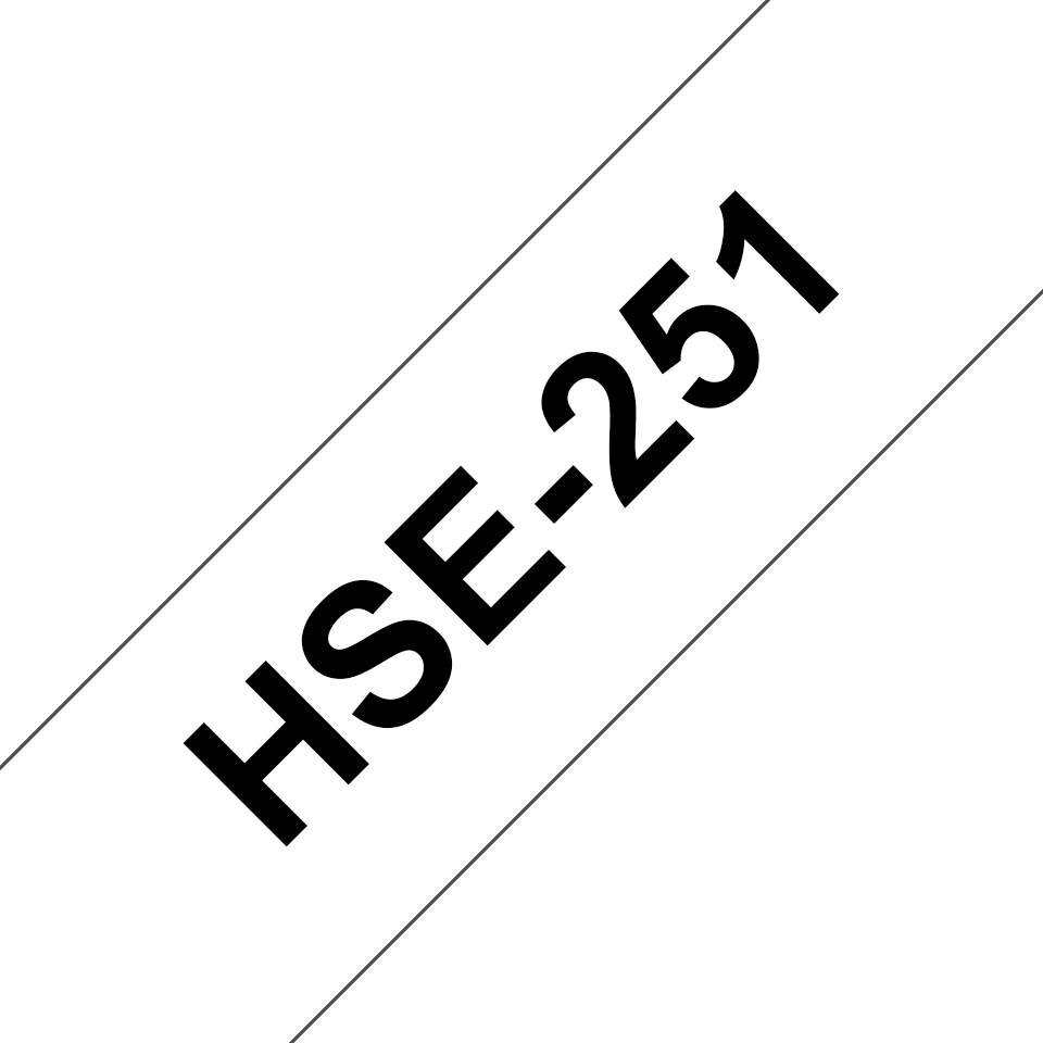 HSE251 2