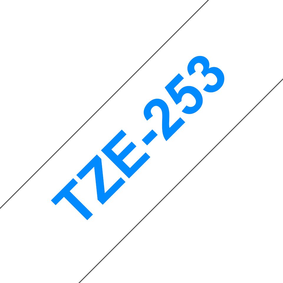 TZe253_main