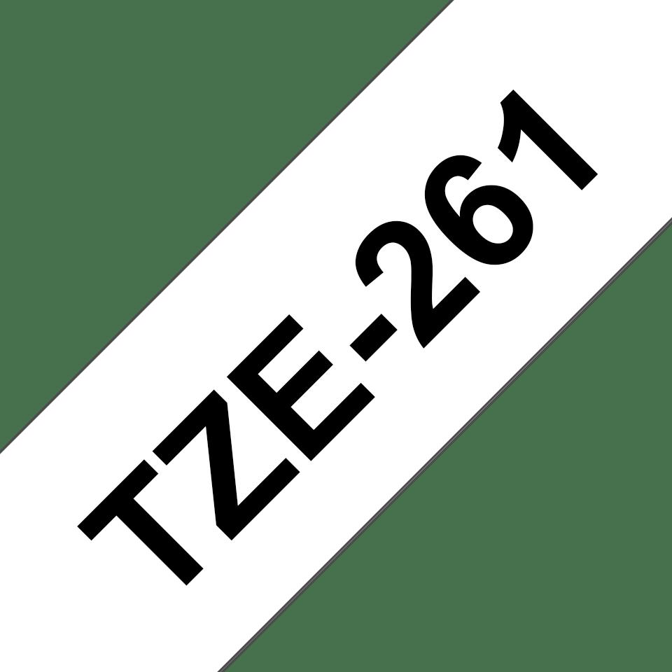 TZe261 2